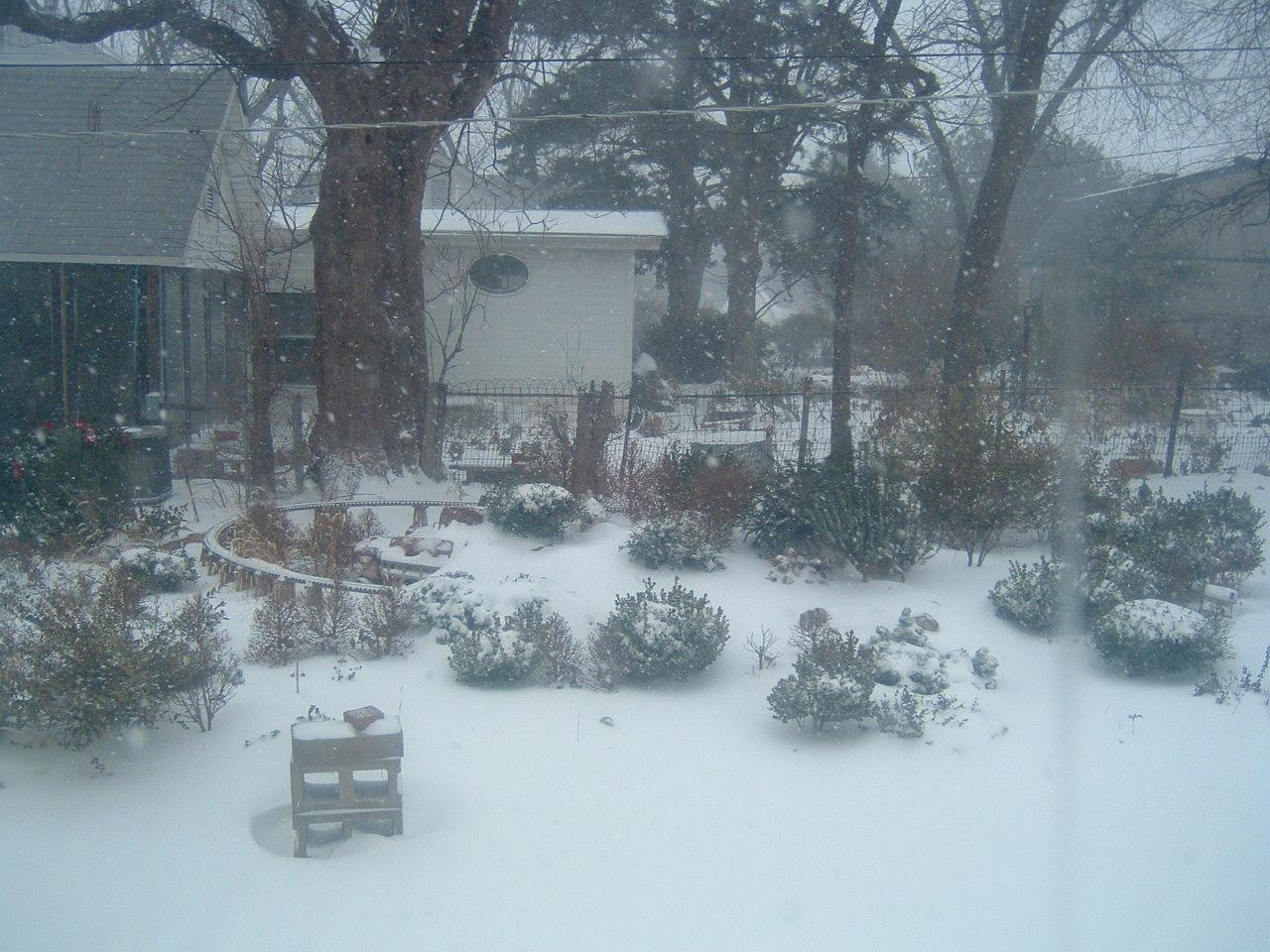 Blizzard 2009